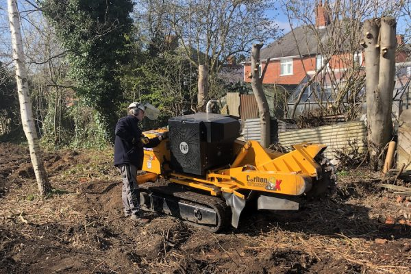 Tree stump grinding & tree stump removal services in Leicestershire, Warwickshire and Staffordshire