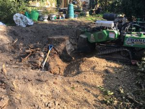 laerge tree stump dug around part way through grinding
